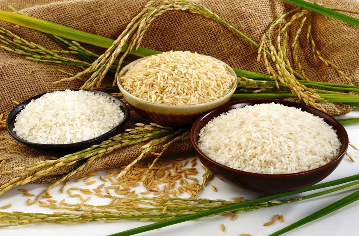 قیمت برنج سرسام آور شد؛ برنج کیلویی چند؟